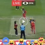 Live Cricket Today IPL RCB vs SRH Eliminator Match Online